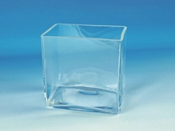 Aquaria, clear glass
